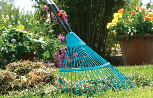 Plastic rakes are by far the cheapest options on market and offer mostly light-weight which allows for easy use