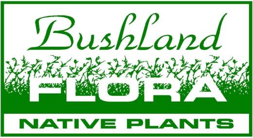 Bushland Flora Native Plants