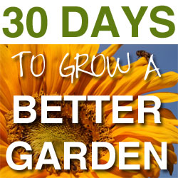 30 days to grow a better garden