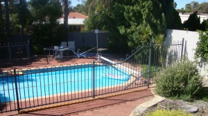 Pool-Fencing-Commodore