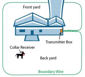 electric dog fence layout