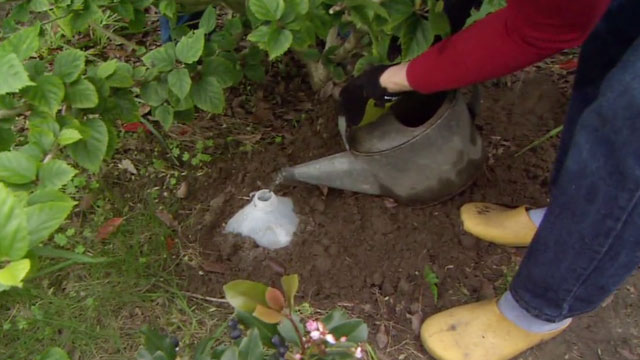 DIY irrigation