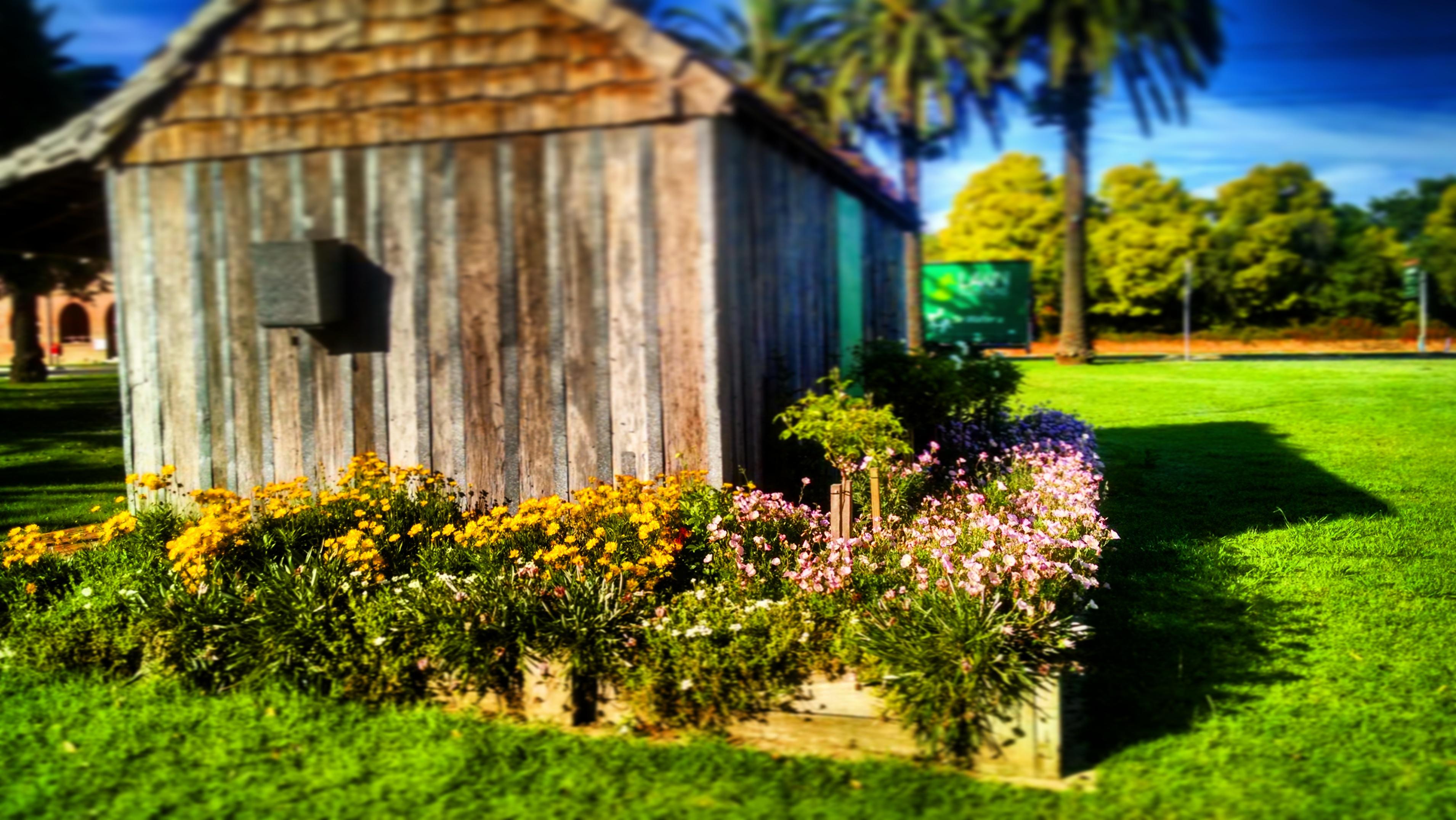 Design series garden design 101 for Garden design 101