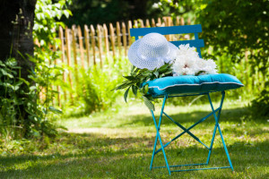 5 Common Lawn Care Problems & How To Fix Them4