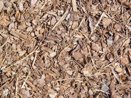 Keeping a healthy layer of mulch on your soil all year around will also help to improve your soil