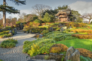 This is a picture of an incredibly well designed and balanced Japanese garden