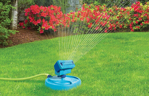 Using a oscillating sprinkler in maintaining turf