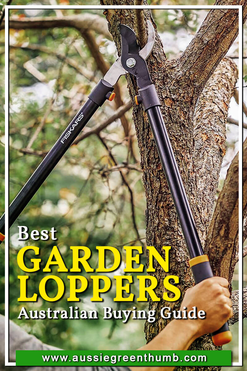 Best Garden Loppers Australian Buying Guide