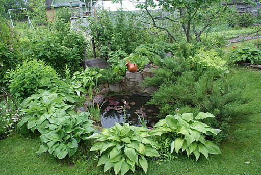 Make your pond safe
