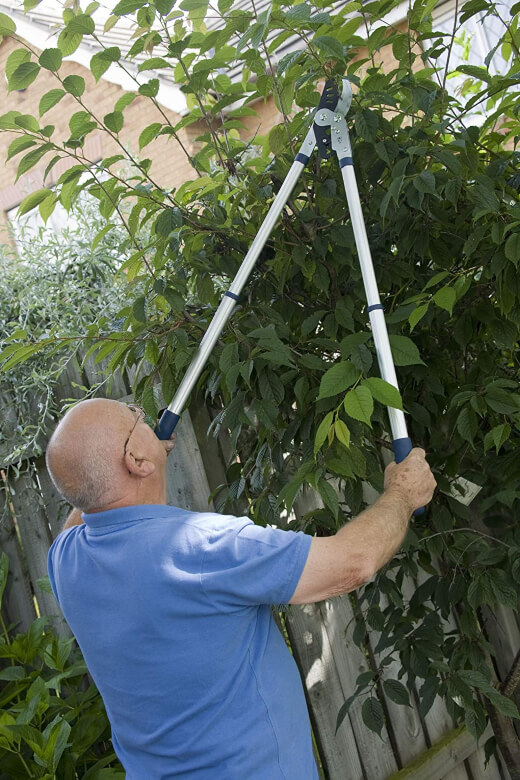 Man using a Spear & Jackson bypass telescopic ratchet loppers