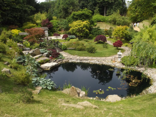 Whether your pond is natural or man-made, it can be an aesthetically pleasing aspect of your backyard