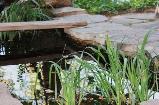 list of the pond plumbing features you will need to keep your pond and water feature healthy