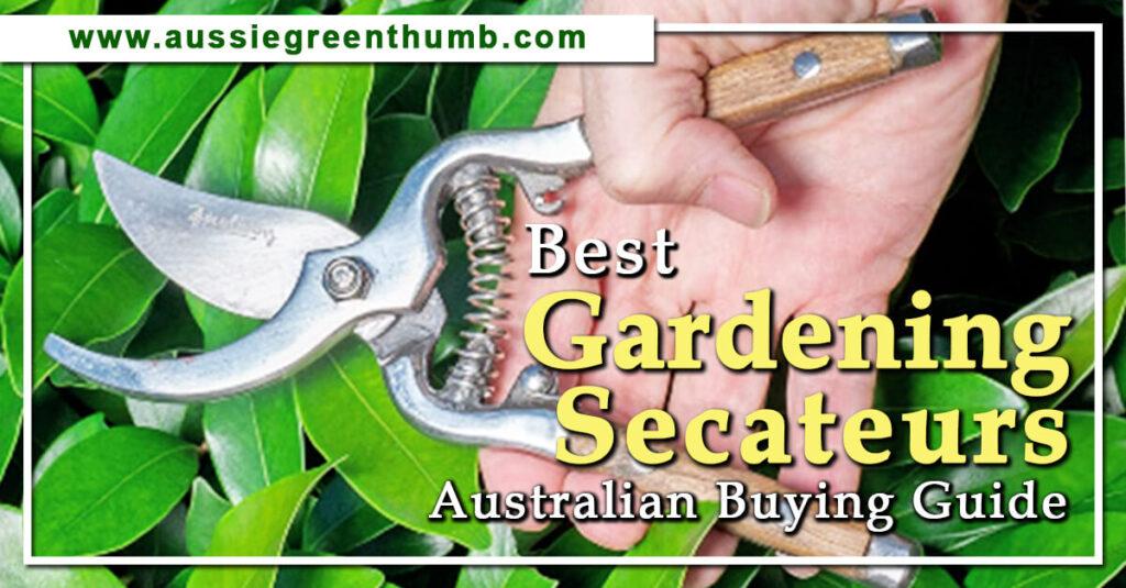 Best Gardening Secateurs