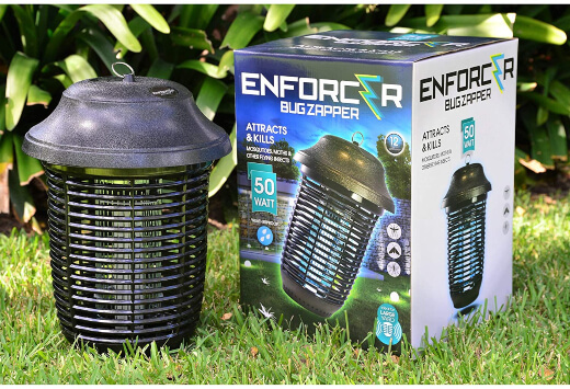 Bug zappers are a simple way to keep bugs at bay, including flies and other flying insects