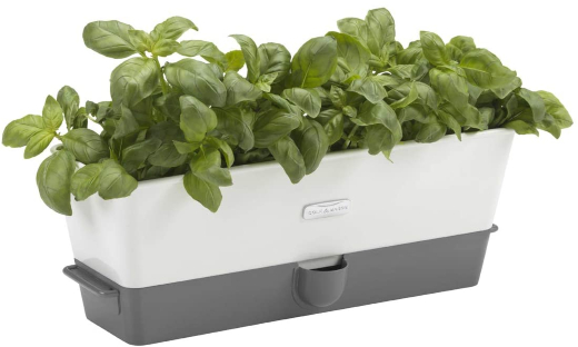 Cole And Mason Herb Keeper