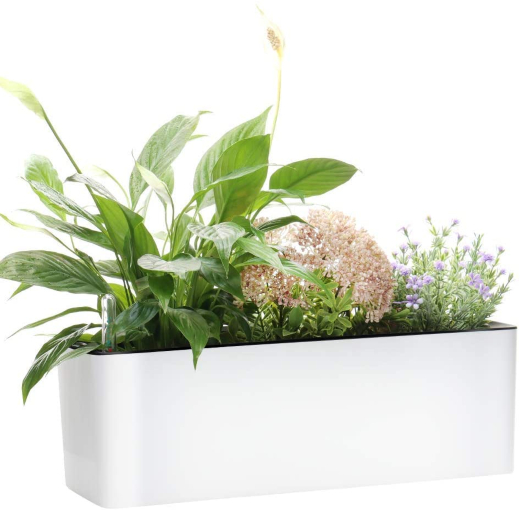 Gardenbasix Self Watering Planter