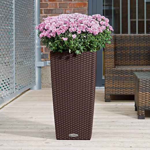 Self-Watering Pots Pros and Cons