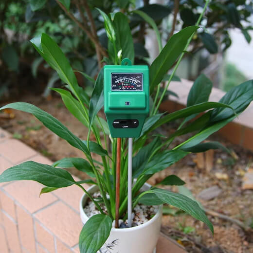 Soil moisture meter in a pot