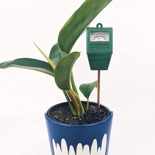 Sow Unique Moisture Meter