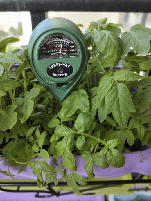 What is the Best Soil Moisture Meter