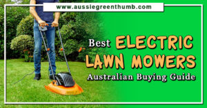 Best Electric Lawn Mowers Australian Buying Guide