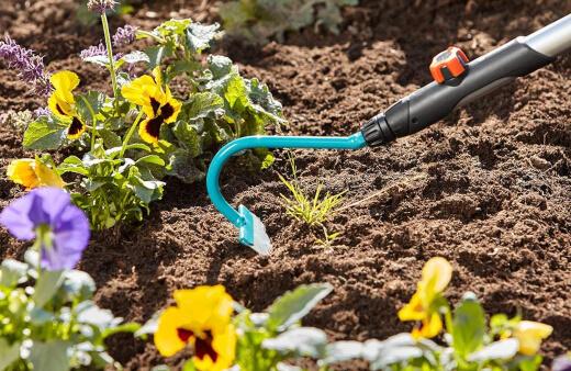 Best Garden Hoes to Buy
