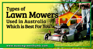 Types of Lawn Mowers Used in Australia