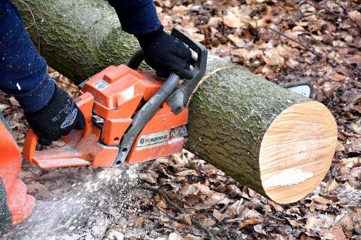 A chainsaw cutting wood