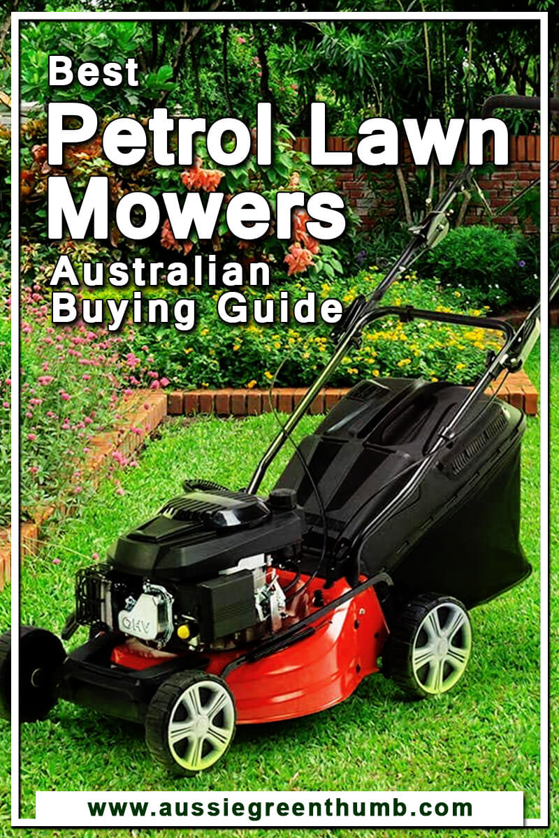 Best Petrol Lawn Mowers Australian Buying Guide