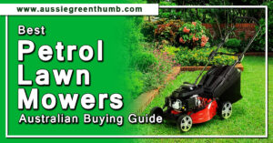 Best Petrol Lawn Mowers Australian Buying Guide