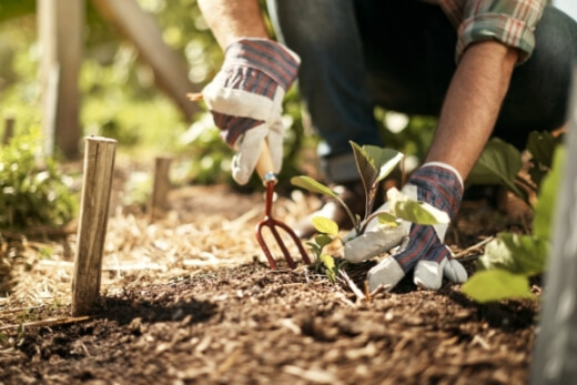 The best way to fix any soil issue, is to keep it happy. Healthy soil will generally not have problems like water repellency