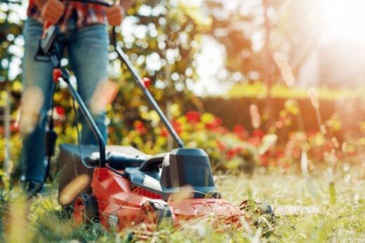 best petrol lawn mowers in Australia