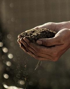Gardening ebook by Aussie Green Thumb Chapter 3 Understanding Your Soil.