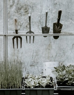 Gardening ebook by Aussie Green Thumb Chapter 4 Buying Gardening Tools.