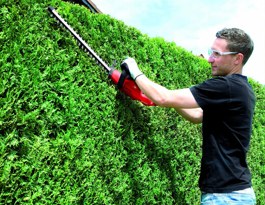 Why Buy an Electric Hedge Trimmer