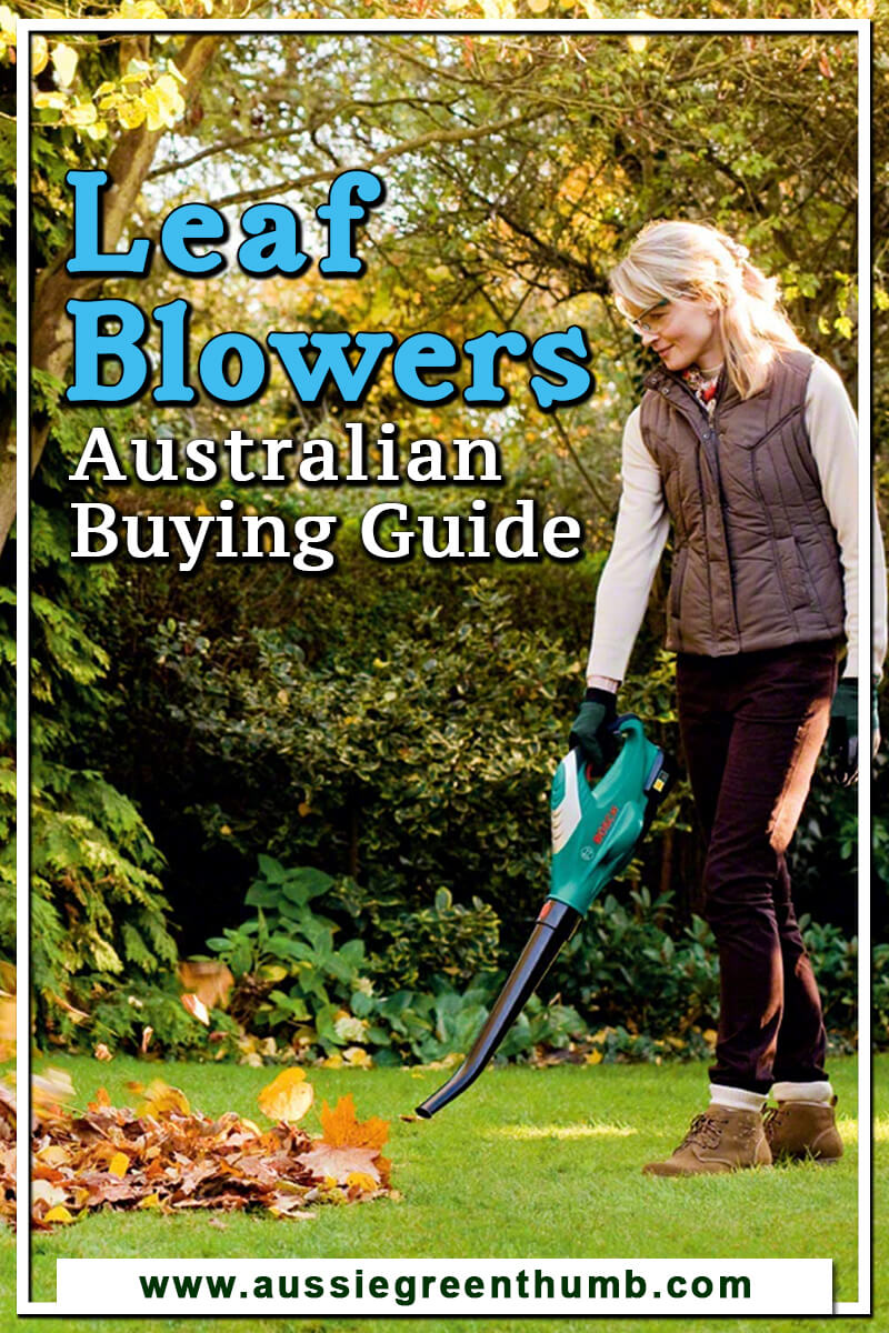 10 Best Leaf Blowers Australian Buying Guide