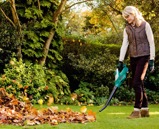 Best Leaf Blowers for 2021