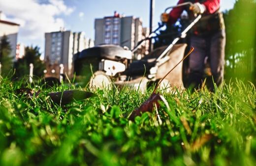 Best Self Propelled Lawn Mowers in Australia for 2021