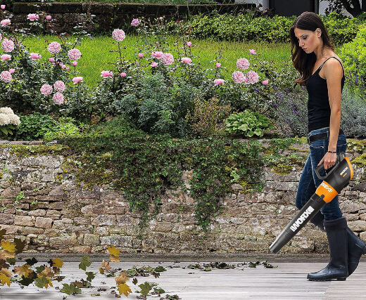 Different Types of Leaf Blower