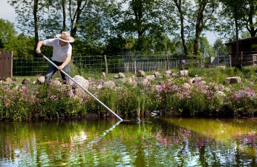 A man cleaning a pond preventing pond algae