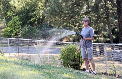 Common mistake made by busy gardeners is to give a small amount of water frequently