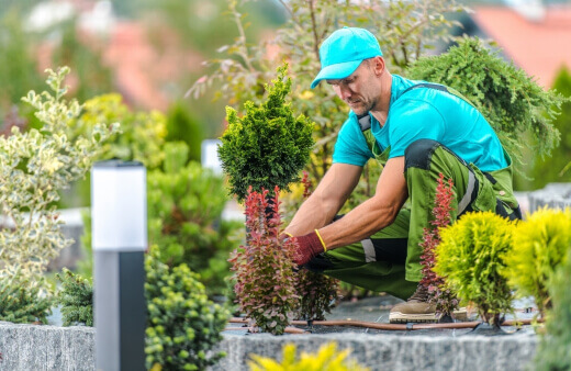 Gardeners in Sydney