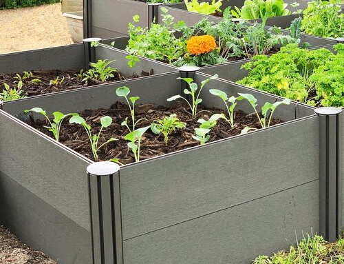 Raised Garden Bed Reviews
