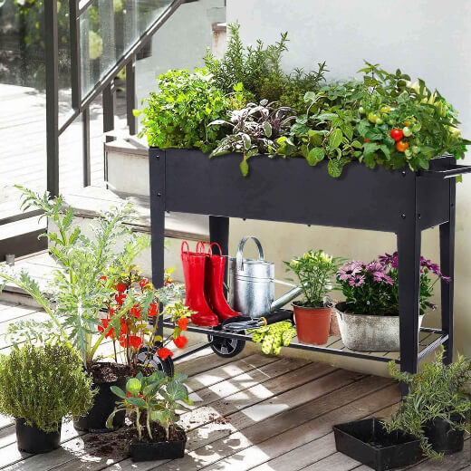 Raised Planter Box with Legs is an attractive addition to a balcony, patio, or kitchen garden