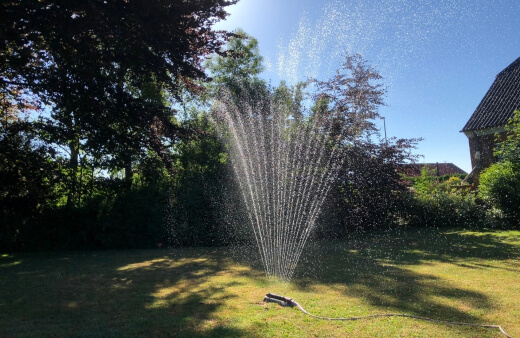 Tips for Using Less Water and Chemicals on Your Lawn