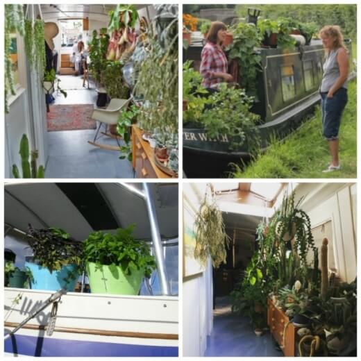 Essential Tips For Boat Gardening