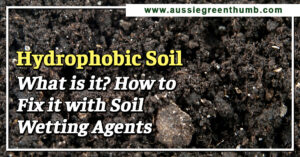 Hydrophobic Soil What is it? How to Fix it with Soil Wetting Agents