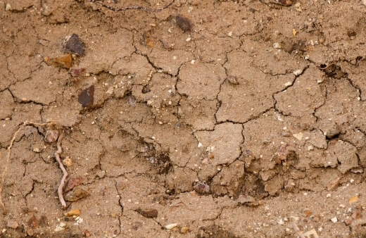 Organic matter is located in the topsoil, when the soil erodes, all of the organic matter gets lost as wel