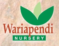 Wariapendi Nursery Colo Vale Nursery