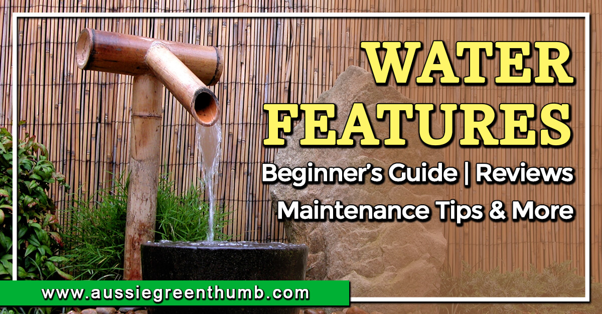 Water Features Beginner's Guide Reviews, Maintenance Tips & More